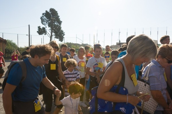 2014 3811 camm caritas