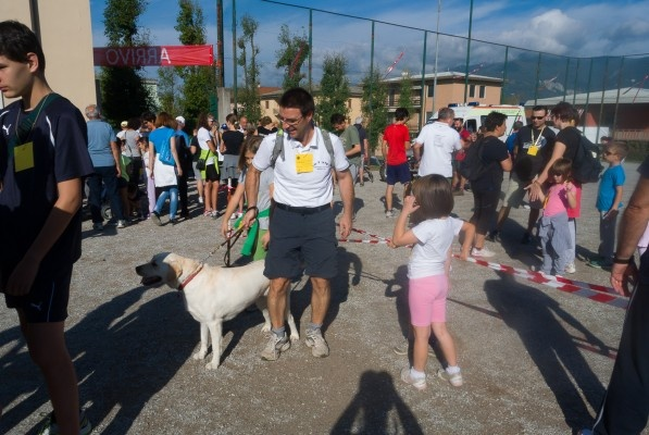 2014 4190 camm caritas